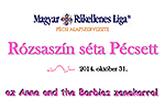 A pink walk in Pécs for breast cancer awareness